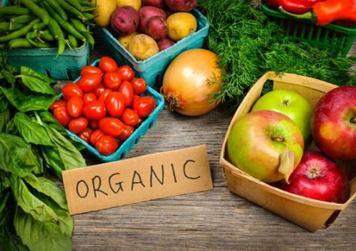 """Почеток на проект-""""Органско производство – Зголемени и стабилни финансиски приходи на земјоделците – Здрава нација"""""""
